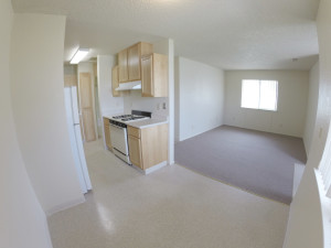 1 Bedroom Unit - Midland Manor
